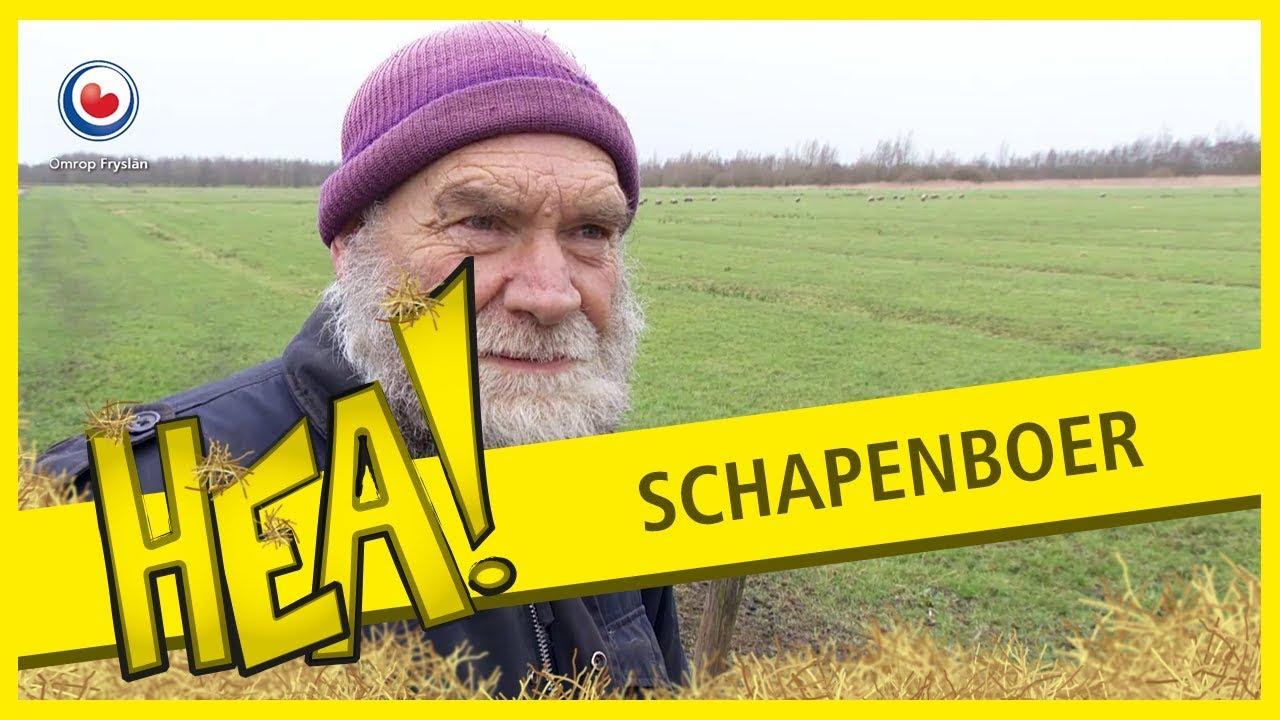 Download HEA! Schapenboer