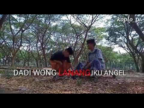 Story Wa.dadi Wong Lanang Kui Angel