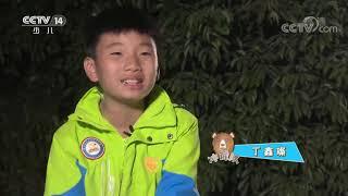 《快乐体验》 20200618 小勇士训练营|CCTV少儿