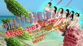 5月29日から31日までリリスク沖縄ツアー開催決定致しました! ・5月29日...