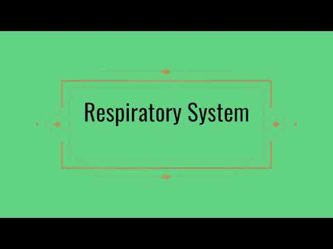 How To Cover Respiratory System || Guyton,Jaypee || E Medics