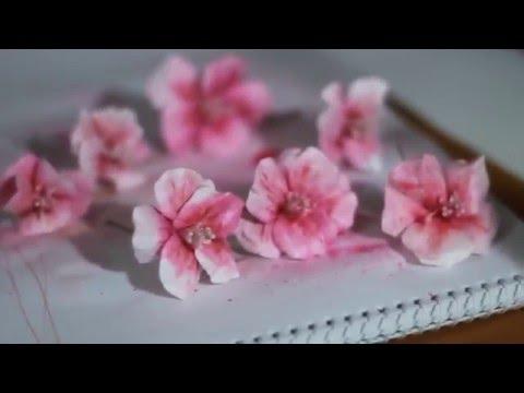 САМЫЕ КРАСИВЫЕ ЦВЕТЫ! Большие цветы из бумаги своими руками! Демо версия МК РОЗА!