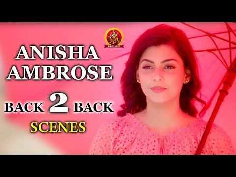 Anisha Ambrose Back to Back Scenes || 2017 Telugu Movie Scenes || Sundeep Kishan
