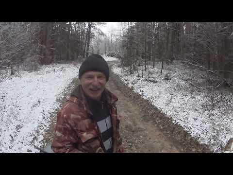 Охота с Русскими гончими на зайца 8 11 19