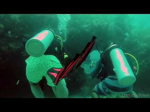 Molasses Reef - Hole In The Wall   Part 1   8-10-17