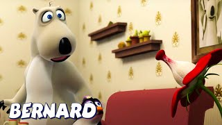 Download Bernard Bear | Bernard and The Killer Plant AND MORE | Cartoons for Children | Full Episodes