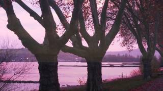 Frédéric Chopin - Prélude in B Minor Op. 28 No 6