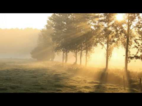 Beethoven - Symphony No 6 in F major, Op 68 - Celibidache