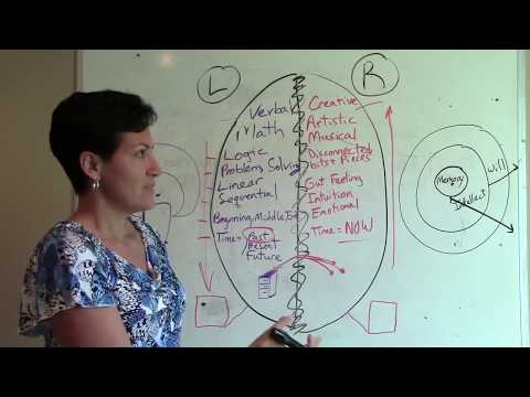 Instinctual Trauma Response Model Explained by Margaret Vasq