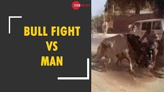 Man dies during Bullfight in Agra