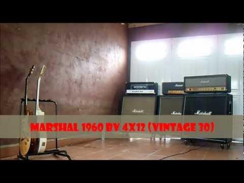 Marshall jcm 800 2203 Zakk Wylde limited edition (terminator 101 mod)