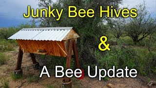 Scrap wood bee hives and a BEE Update!