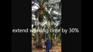 TenAsia introduces PalmPro EC-CUT, a non-motorised Economy CANTAS oil palm harvesting cutter