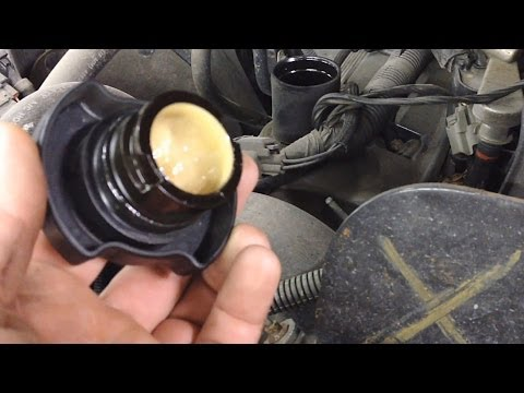 Ford Quick Tips: #1 Engine Oil Cap Puddding