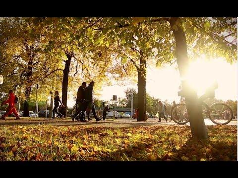 Toruń jesienią