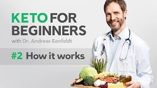 A keto diet for beginners, part 2: how it works