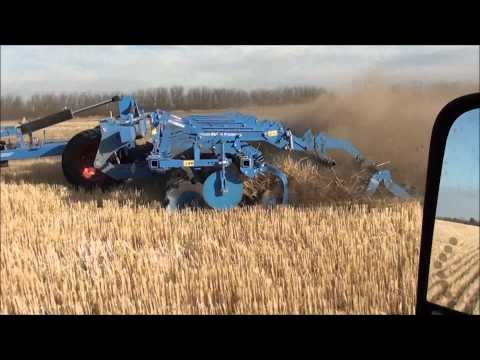 Earview Colony. Lemken Rubin