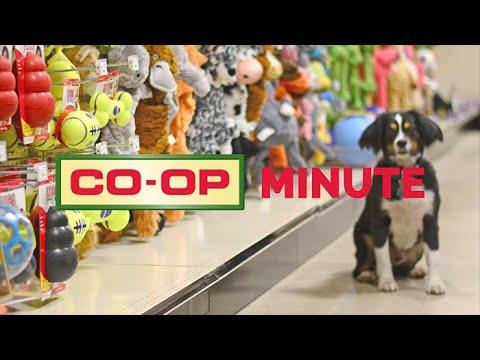 Co-op Minute: Flea & Tick Control