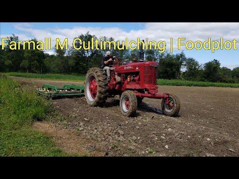 Farmall M Cultimulching | Foodplot