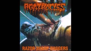 Agathocles - Razor Sharp Daggers (1995) Full Album HQ (Mincecore) YouTube Videos