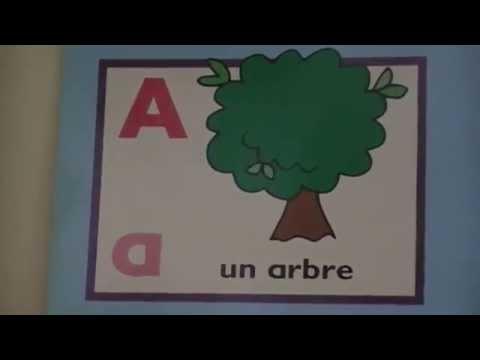 Le nom et le(s) son(s) des lettres de l'alphabet.