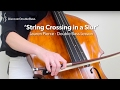 Download Crossing Strings in a Slur - Double Bass Lesson (L#96) MP3 song and Music Video