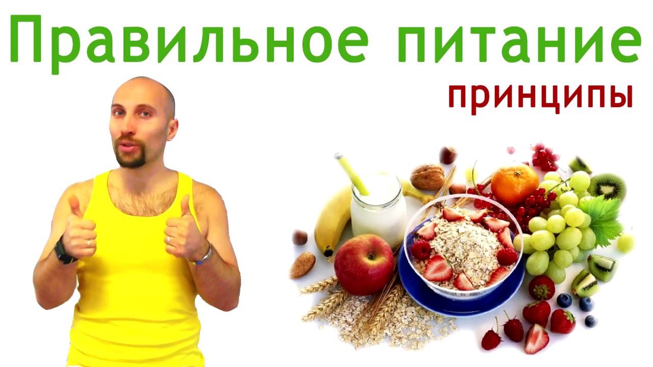 Правильное питание принципы, Основы правильного питания ...