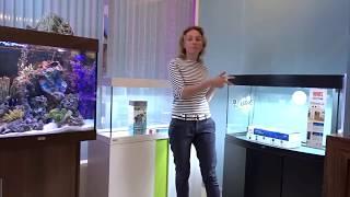 Фото Варианты оформления для аквариумов Eheim Vivaline 126 и Juwel V S ON 180