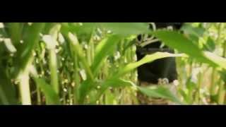 Hirs Skład - Life Changes [ remix] [ M. N. T. VOL. 2]   Shot #3 by CRBN