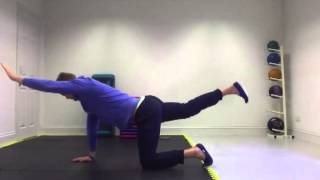 Bird Dog Core Stability Exercise - Personal Training Nottingham
