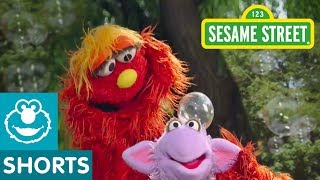 Sesame Street: Catching Bubbles | Murray's Science Experiments