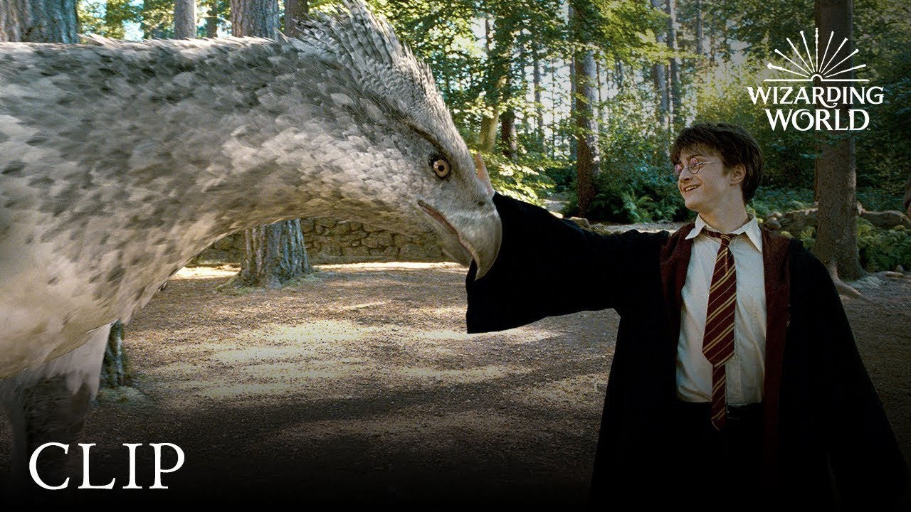 Meet Buckbeak Harry Potter And The Prisoner Of The Azkaban
