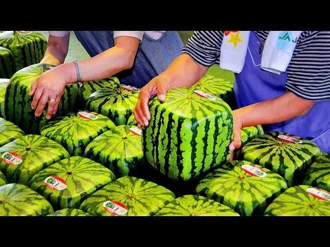 10 Most Exotic Fruits