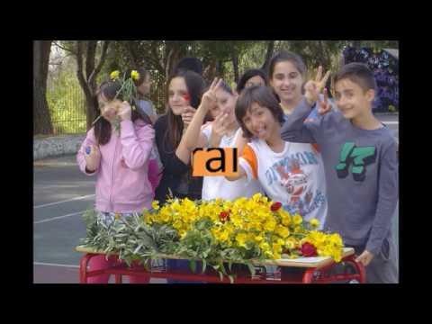 The 3rd Primary School, Agii Anargyri