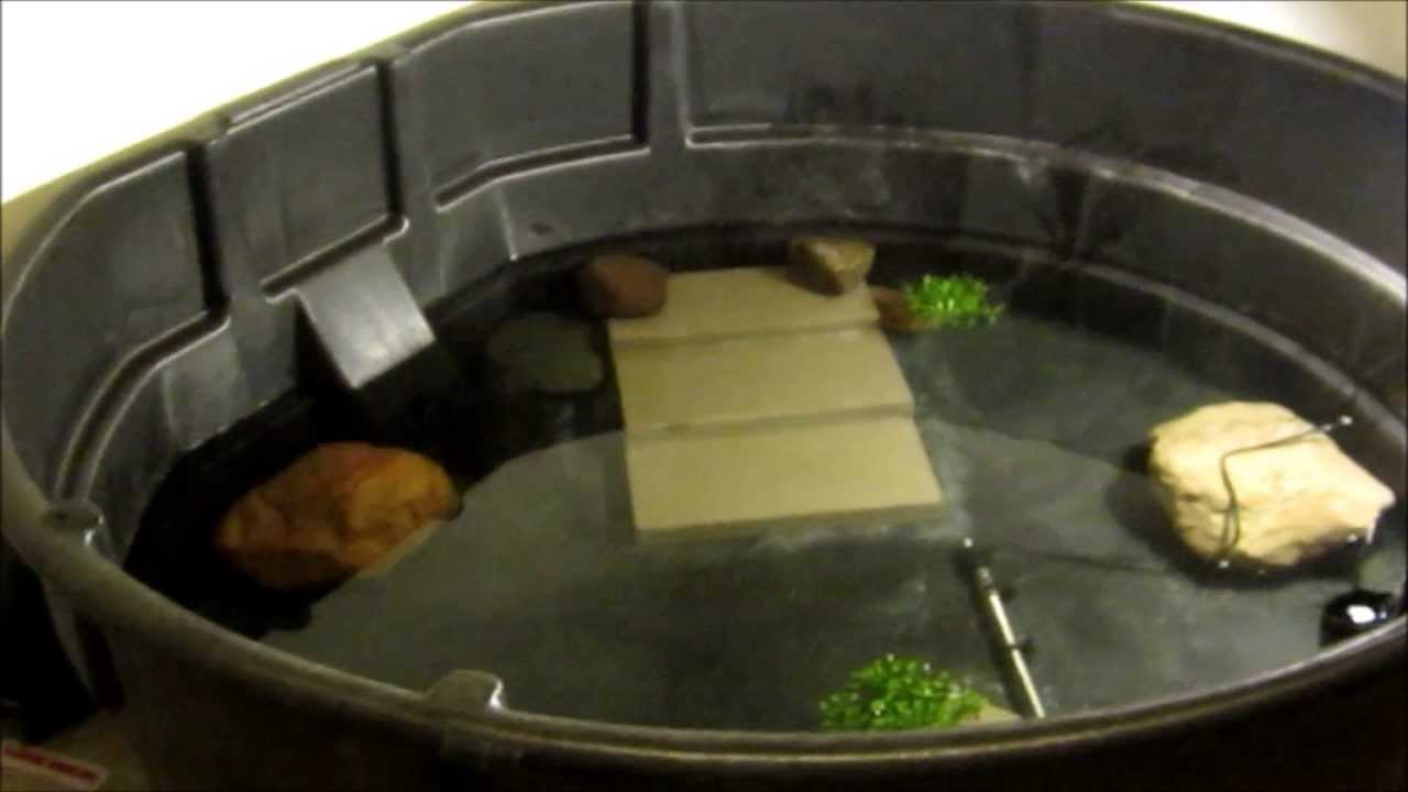 300 Gallon Snapping Turtle Cage Setup Youtube