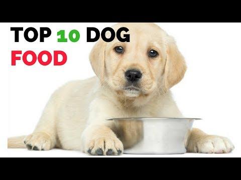Healthy Dog food brands   top 10 dog foods!!!