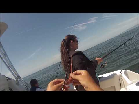 April 2017 FAMILY BOAT TRIP - Santa Monica Bay