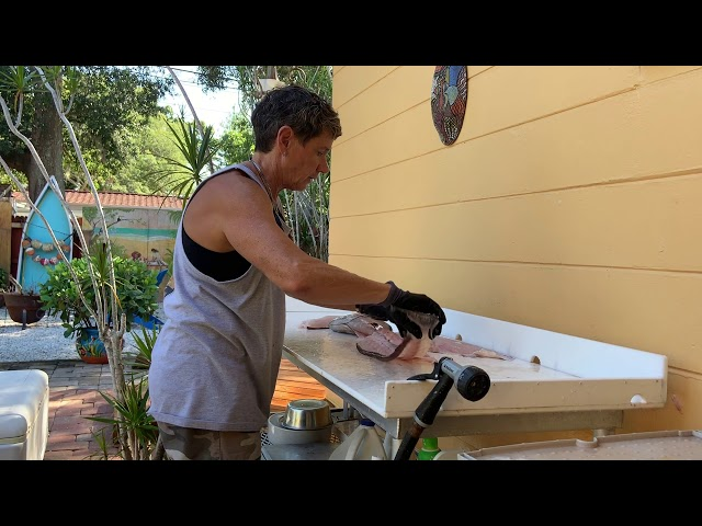 How to Fillet Scamp Grouper