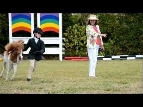 Miniature Horses, Ag Show, Apr 20 2012