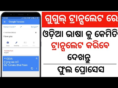 How to translate Odia to English in Google    English to Odia in Google translator   Google translat