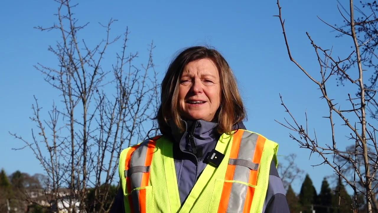 Park Stewardship: Keeps Volunteers Coming Back