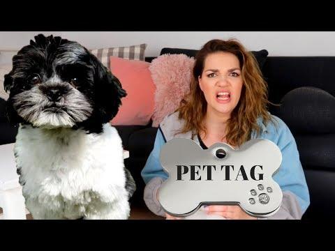 Šutnuo mi je psa Budu! | PET TAG | MashintheBeauty