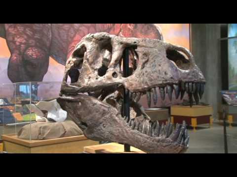 T.rex Discovery Centre near Eastend, Saskatchewan