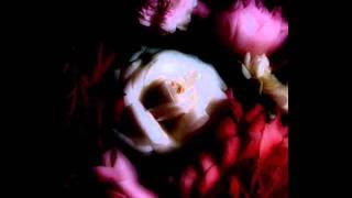 水に挿した花.
