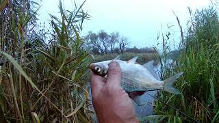 Рыбалка с ночевкой поздней осенью на реке, фидер.