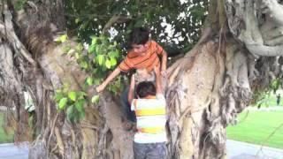 Zamzama Park.m4v 2017 Video
