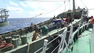 Bắt giữ 130.000 lít dầu D.O vi phạm trên vùng biển Vũng Tàu