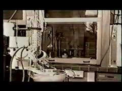"Dopplereffekt- ""Scientist"""