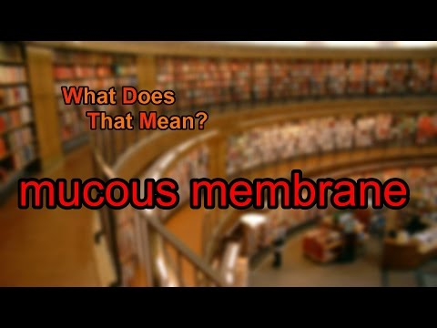 What does mucous membrane mean?