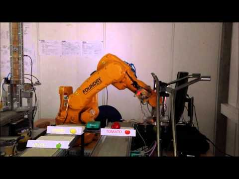 Project and Problem based Sensor Data Fusion for Fruit Sorting Robotic System